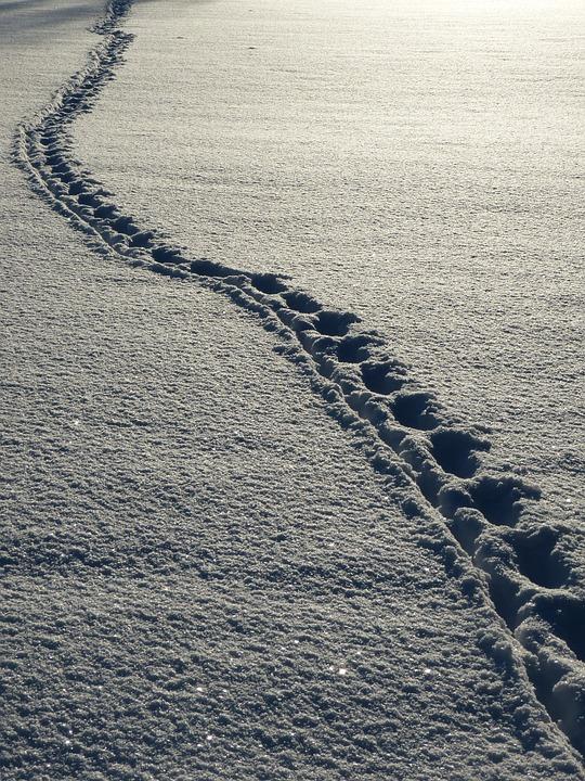 snow-69830_960_720